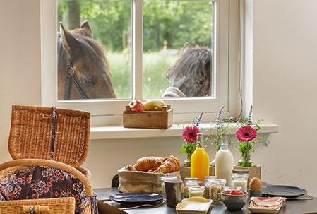 Heerlijk ontbijt in de ochtend